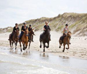 Vakantiehuis Ameland paardrijden strand